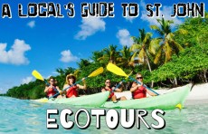 A Local's Guide to St. John Ecotours
