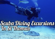 Scuba Diving Excursions in St. Thomas