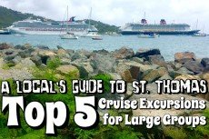 A Local's Guide to St. Thomas: Top 5 Shore Excursions for Large Groups