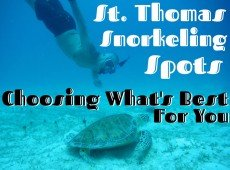St. Thomas Snorkeling Spots: Choosing What's Best For You