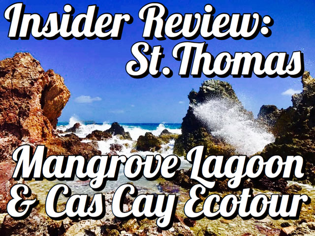Insider Review: St. Thomas Mangrove Lagoon and Cas Cay Ecotour