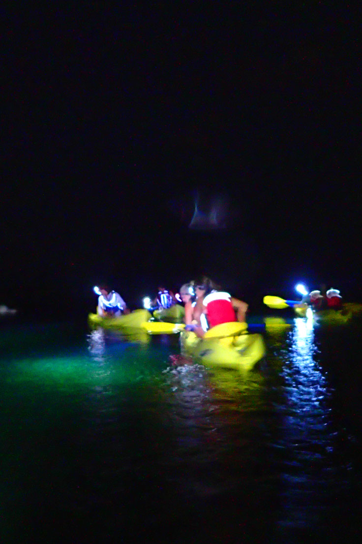 Ecotour: Night Kayak with Pirate and Ghost Stories