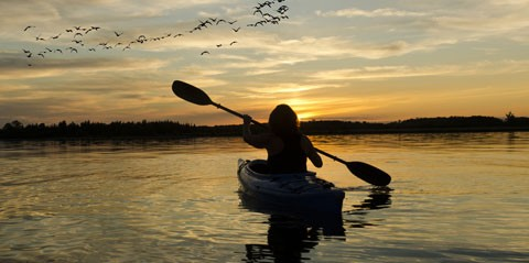 Sunset Kayaking with Bird Watching in St Thomas