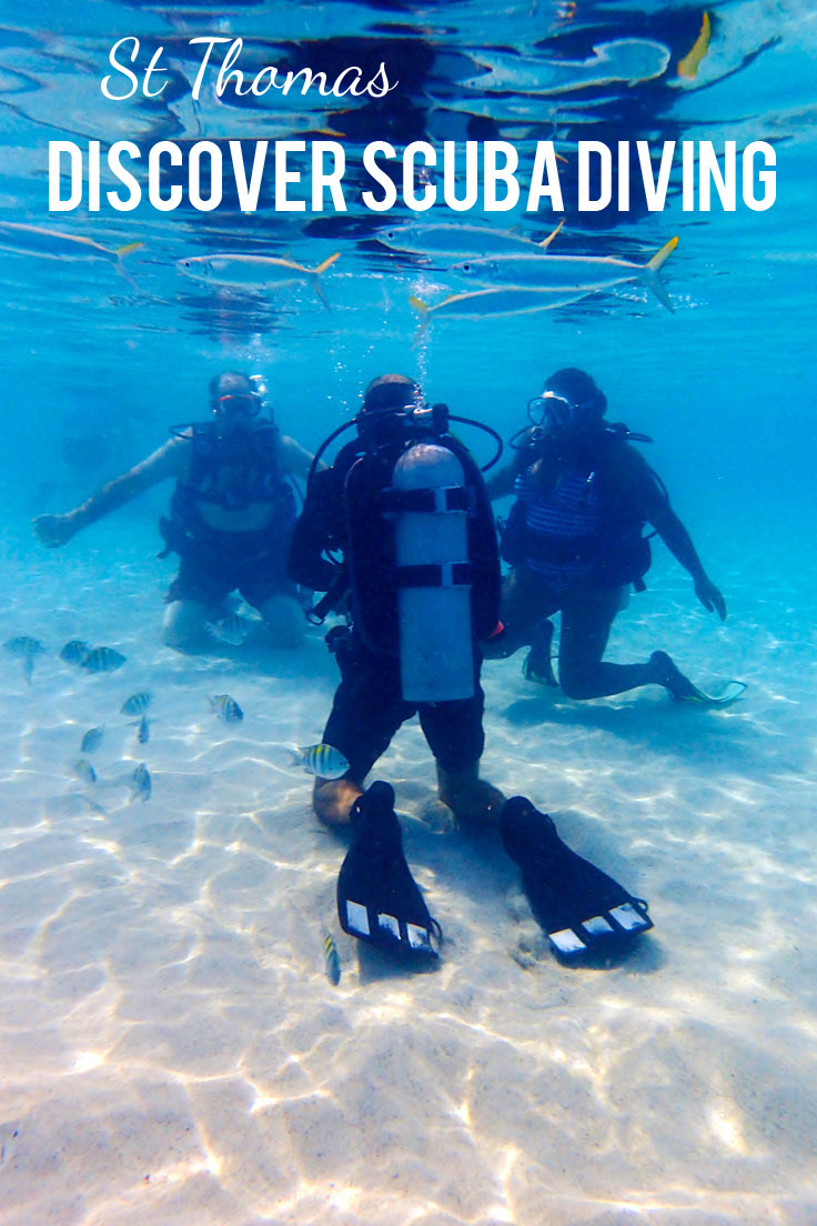 PADI Discover Scuba Diving in St. Thomas