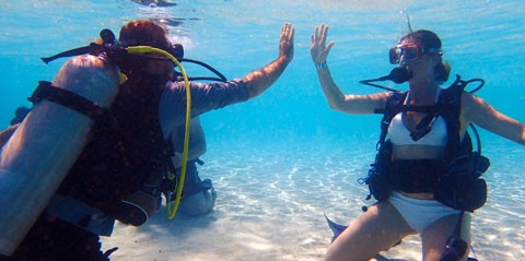 Discover Scuba Diving in St Thomas